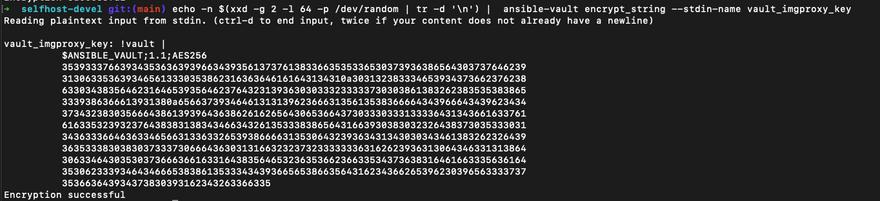 generated vault_imgproxy_key