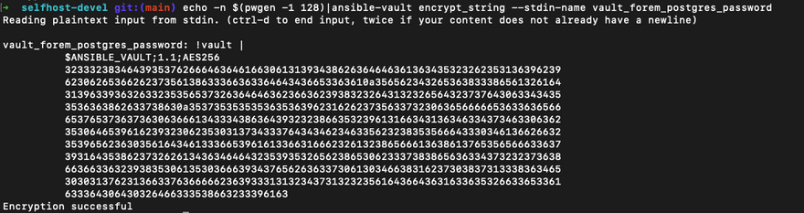 generated vault_forem_postgres_password