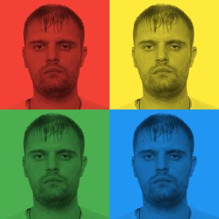 Serge Tarkovski profile picture