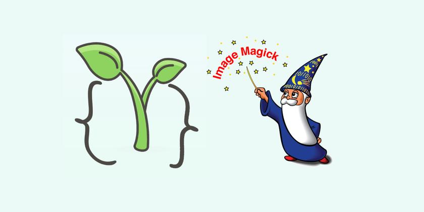 Cover image for Installing Forem on Ubuntu 18.04 (Part 4 - ImageMagick)