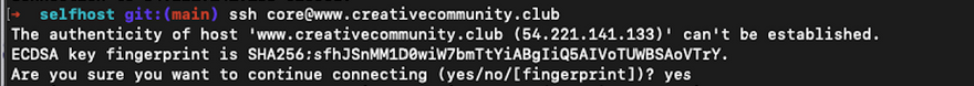 ssh core@<SERVER IP ADDRESS example
