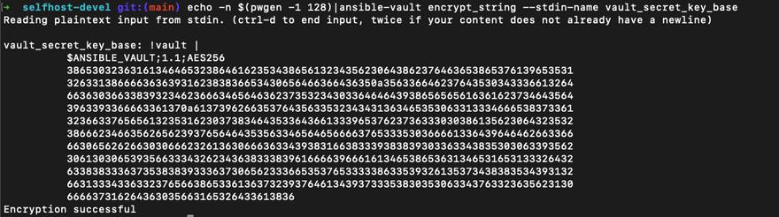 generated vault_secret_key_base